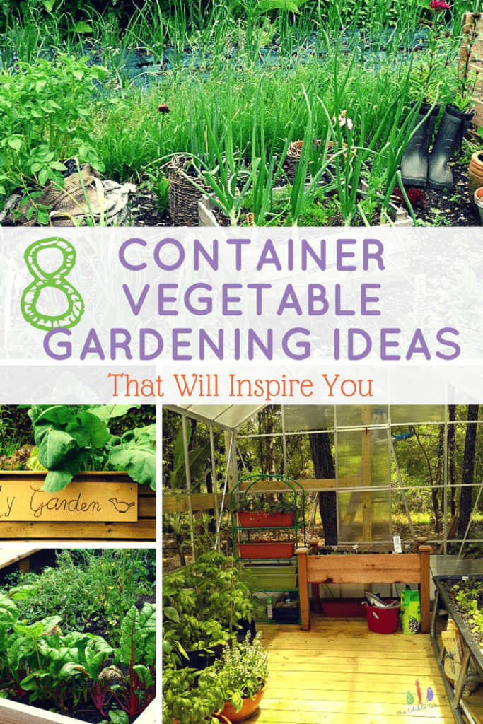 8 Container Vegetable Gardening Ideas That Will Inspire You – Container Vegetable Gardening Plans