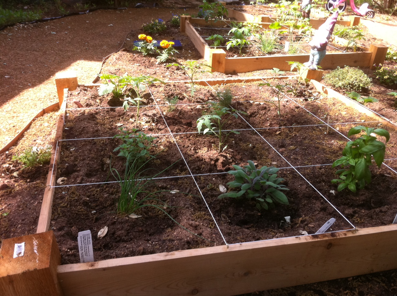 4 ideas that will make you better at square foot gardening for Four foot garden blueprint