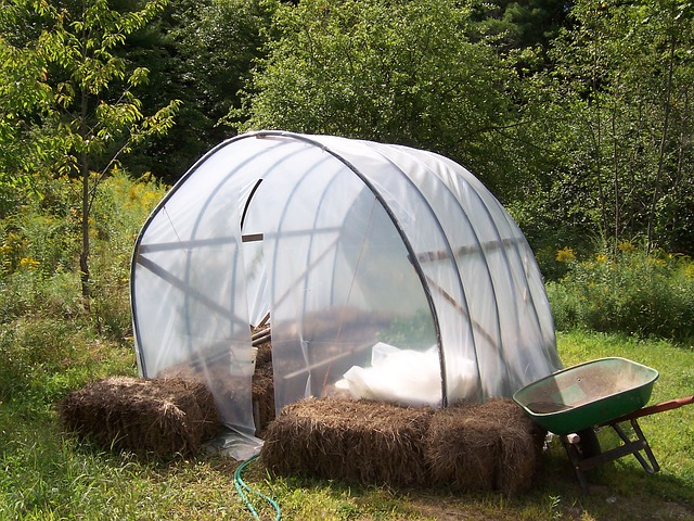 How to Find the Top Rated Greenhouse Kits for Your Edible Garden
