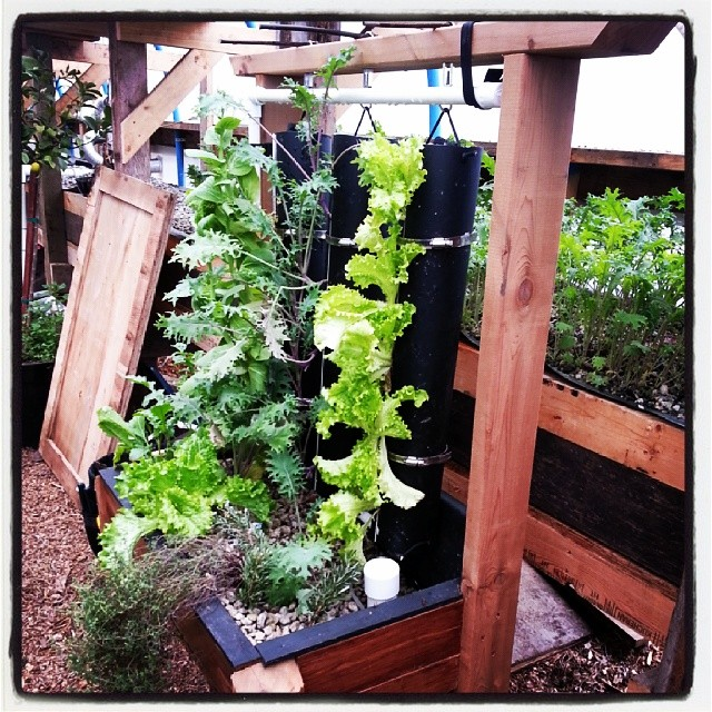 How To Build A Vertical Vegetable Garden Easier Than You Think
