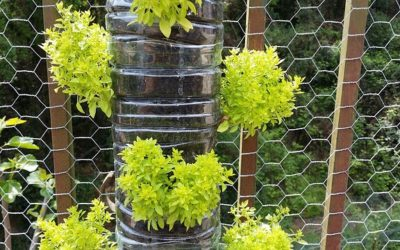 How to Build a Vertical Vegetable Garden: It's Not as Difficult as You Think