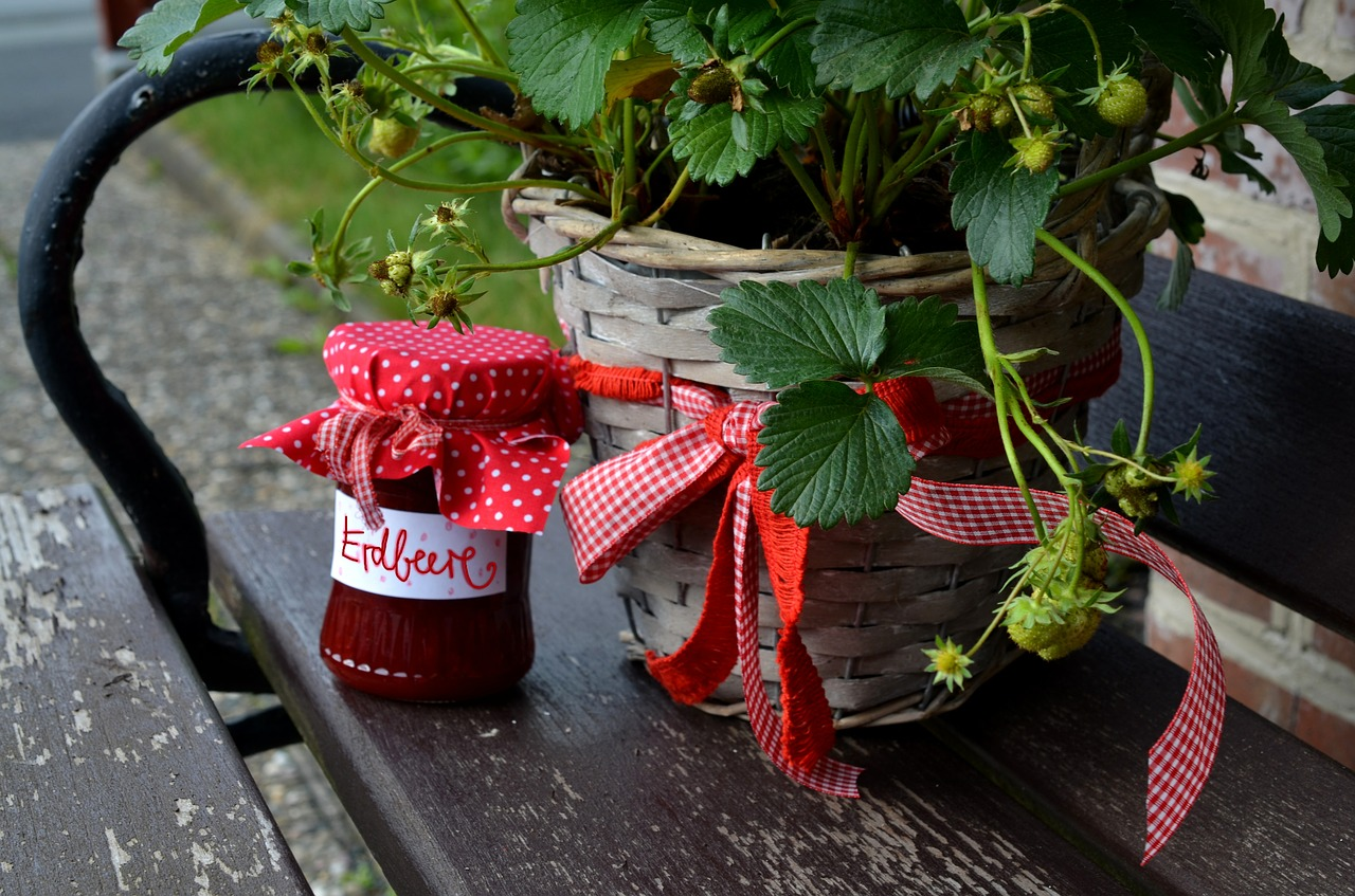 7 Real-Life Lessons on How to Grow Strawberries From Seeds