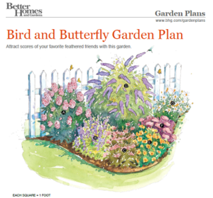 Small Butterfly Garden Design