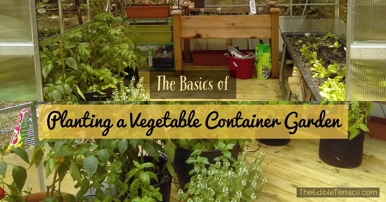 Planting vegetables in pots is a perfect  low maintenance way for you to  grow your. Easy Steps To Growing Vegetables In A Small Space   Container