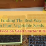 Finding The Best Way to Plant Vegetable Seeds – Advice on Seed Starters