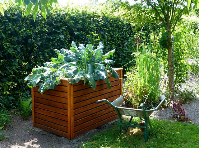 How To Easily Build An Elevated Vegetable Garden Video