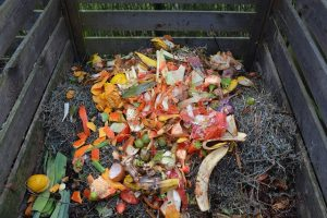 best compost ingredients