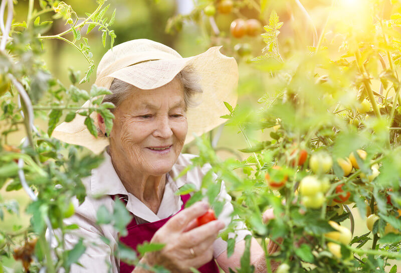Here 39 S The 8 Best Gardening Tools For Seniors