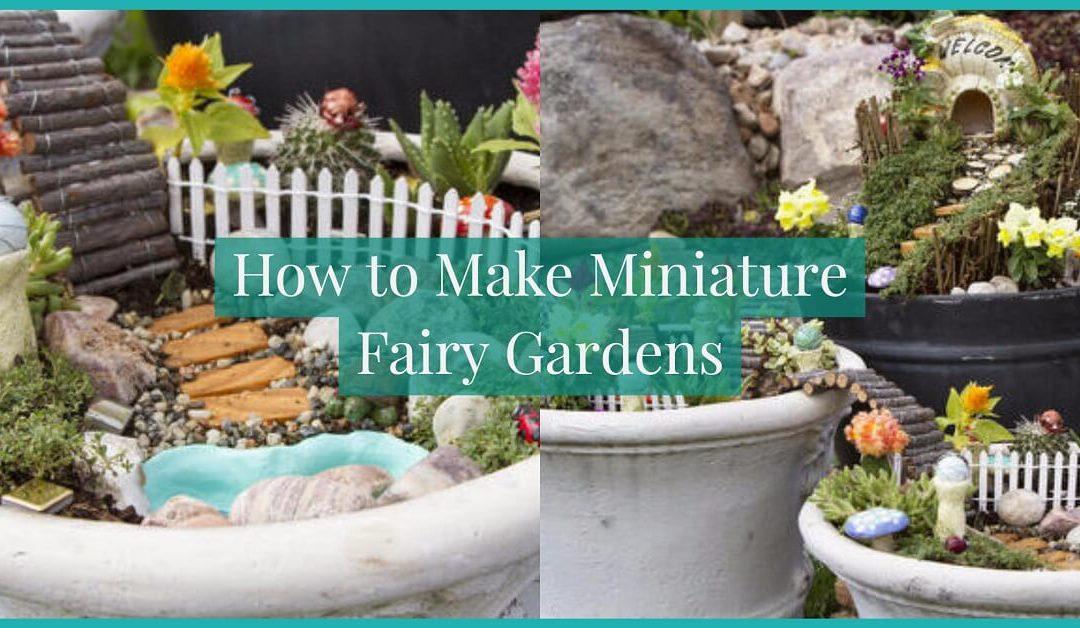 Learn How to Make Miniature Fairy Gardens