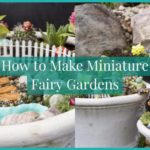 Learn How to Make Miniature Fairy Gardens