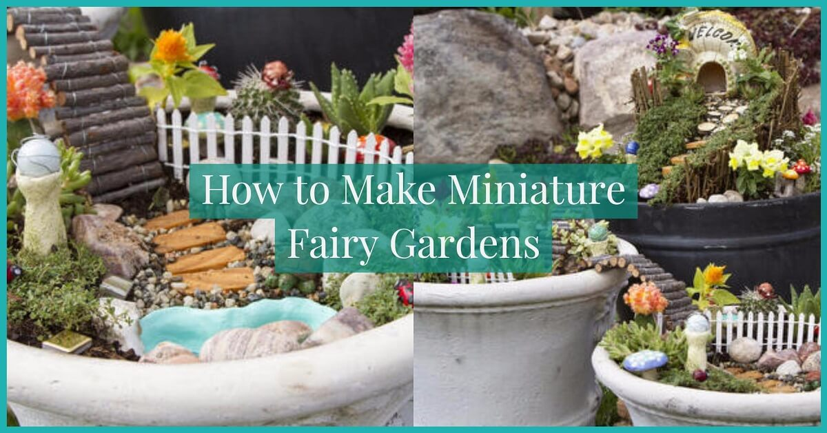 Let Your Imagination Soar By Learning How To Make Miniature Fairy Gardens!  This Is A Really Fun And Unique Gardening Project That Is Perfect For  Everyone.
