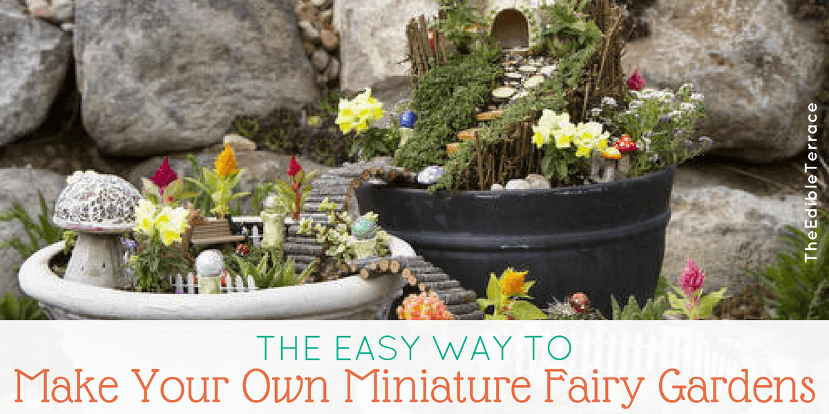 Make Your Own Miniature Fairy Garden The Easy Way