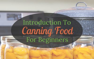 An Introduction To Canning Food For Beginners