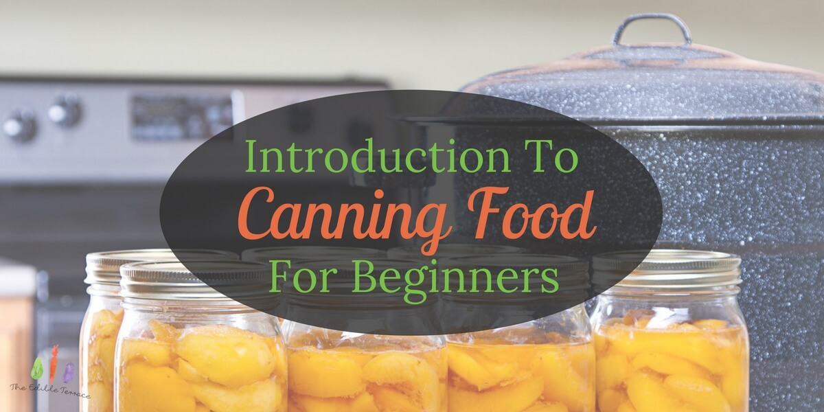 Canning Food For Beginners: A Simple How To Tutorial