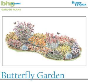 Kind flowers do butterflies like