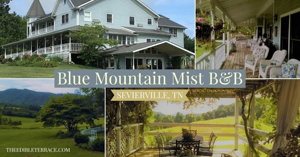 bed breakfast near pigeon forge tn