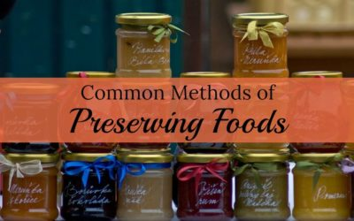 Five Common Methods of Processing & Preserving Food