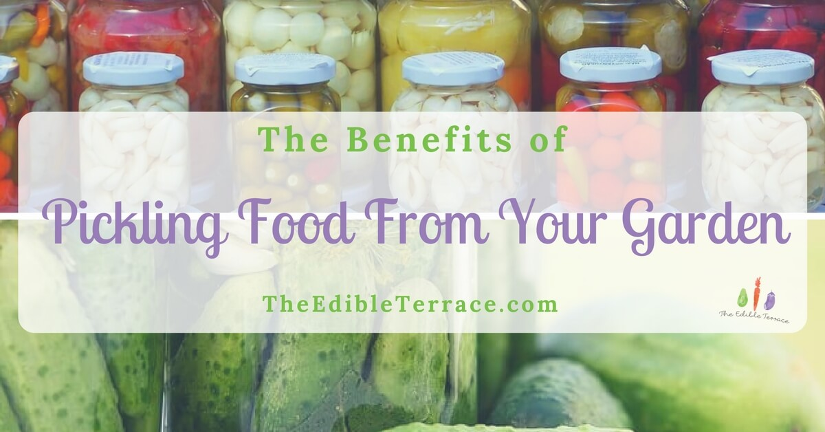 The Benefits Of Pickling Food From Your Garden