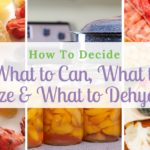 How To Decide What To Can, What To Freeze And What To Dehydrate