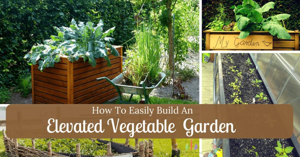 Build an Elevated Vegetable Garden