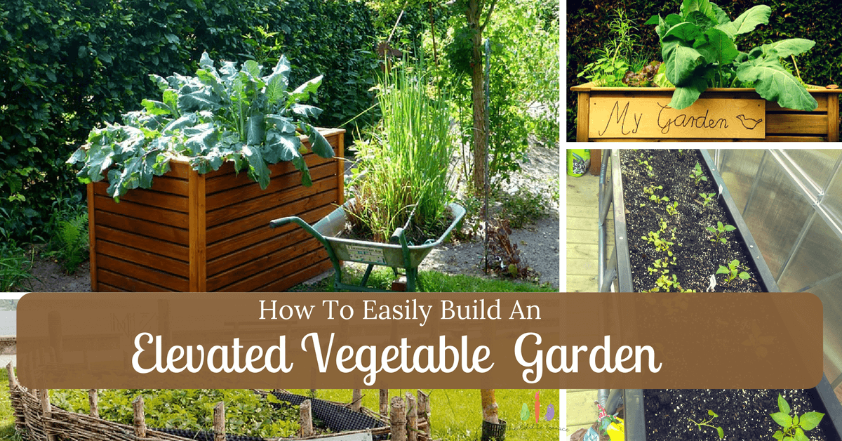 How To Easily Build An Elevated Vegetable Garden (Video)