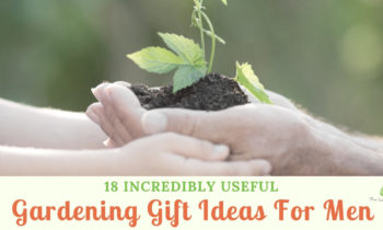 18 Incredibly Cool Gardening Gift Ideas For Men