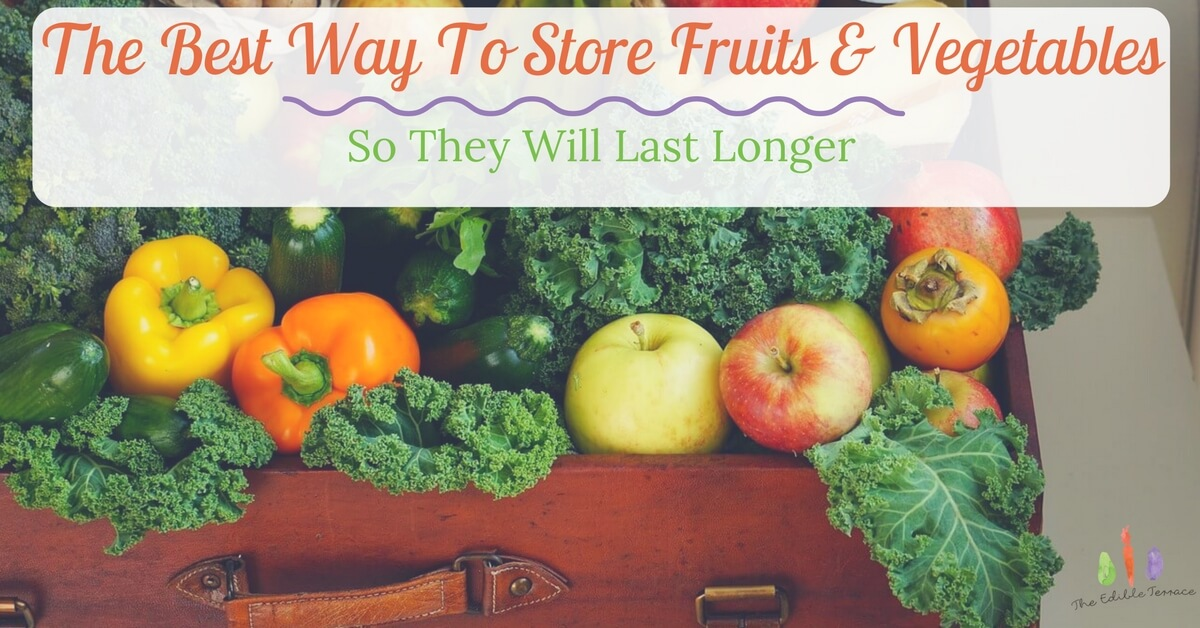 The Best Way To Store Fruits & Vegetables So They Will Last Longer