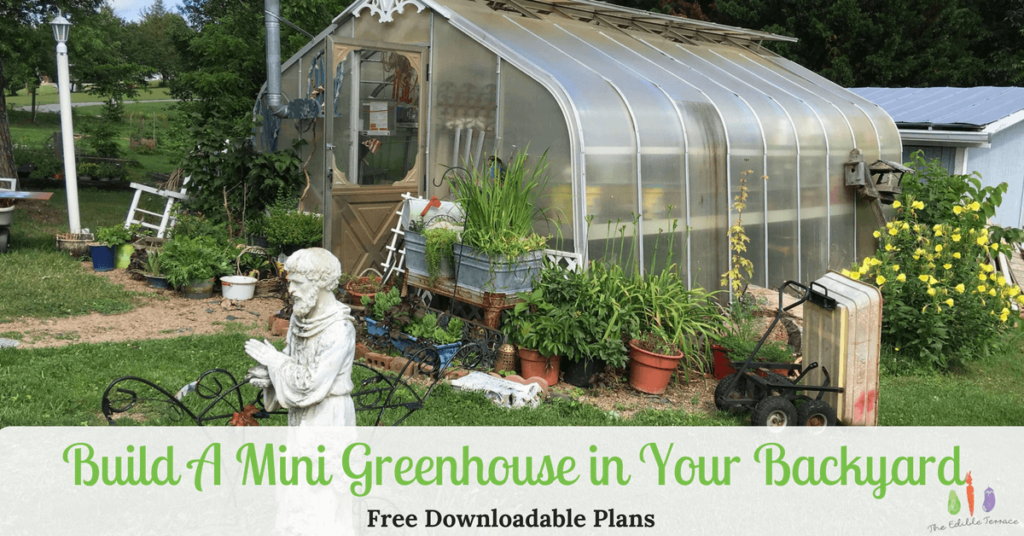 How To Build A Mini Greenhouse In The Backyard Free Plans