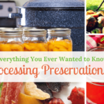 Everything You Ever Wanted to Know About Food Processing Preservation Methods