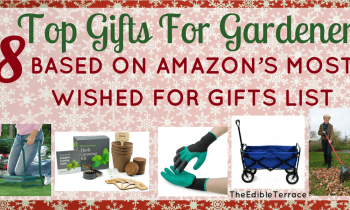 18 incredibly cool gardening gift ideas for men for Gardening gifts for him