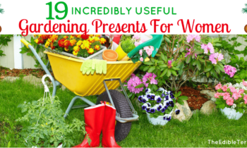 19 Useful Gardening Presents For Women