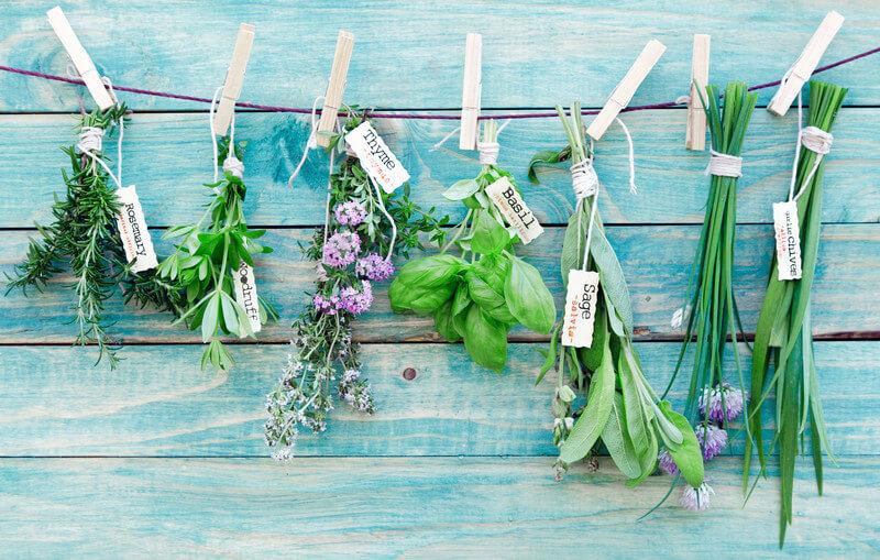 grow herb garden indoors year round