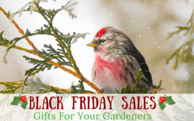 Black Friday Deals – Gardening Gifts For Your Fav Gardener