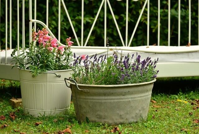 Good Urban Herb Gardening