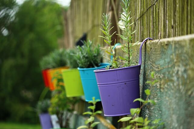 Bon Terrace Herb Gardening Tips