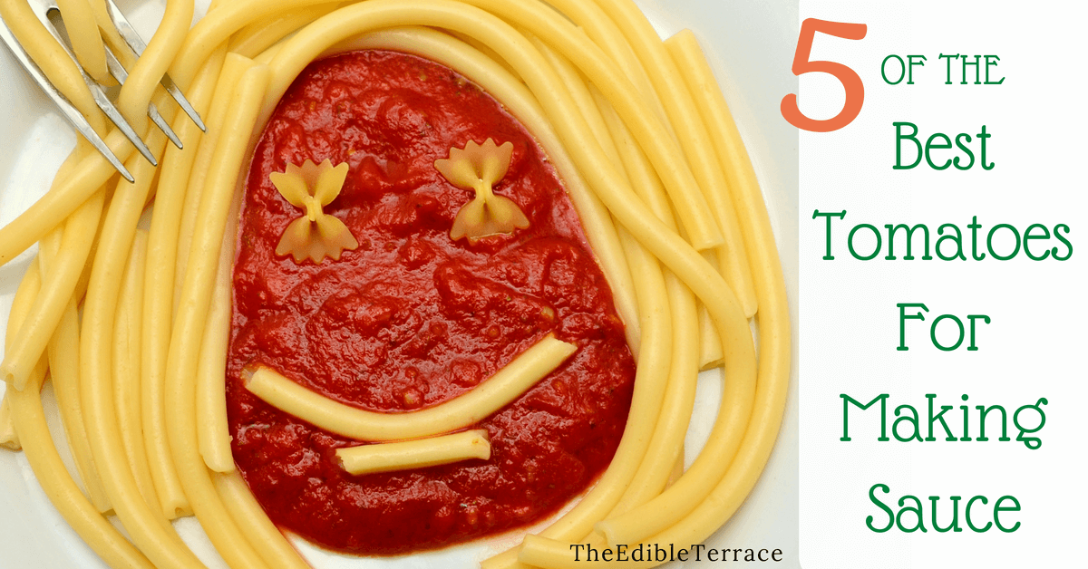 5 of the Best Tomatoes for Making Sauce [Infographic]