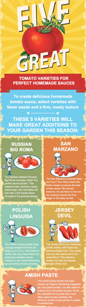 With thousands of tomato varieties on the market, selecting the best options for your garden can seem like a monumental task. If your goal is to serve up tasty tomato sauce, some varieties are better suited for the job than others. The best tomatoes for making sauce have fewer seeds and a firm, meaty texture. Find out 5 of the best varieties here. #Tomatoes #VegetableGarden