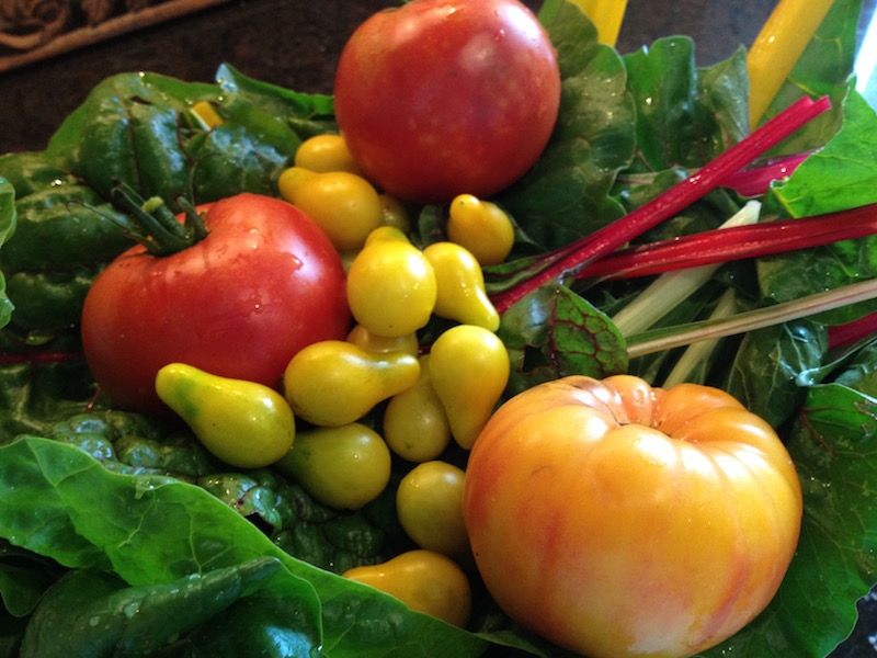 best soil additives for tomatoes