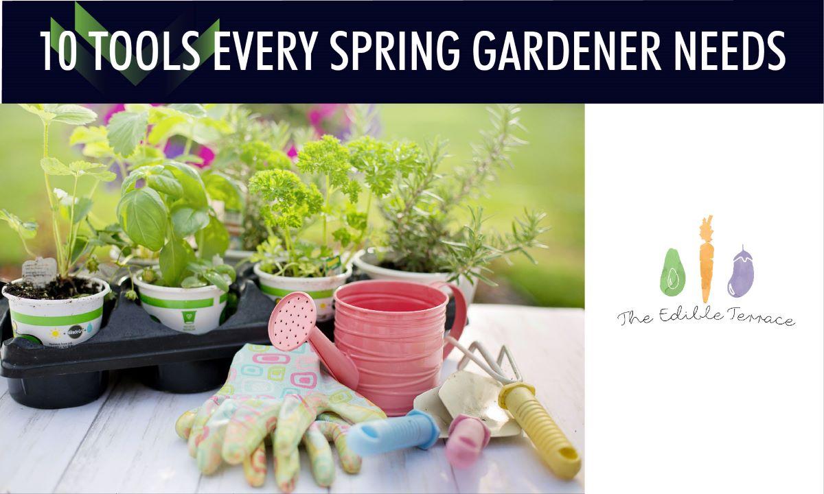 10 Tools Every Spring Gardener Needs