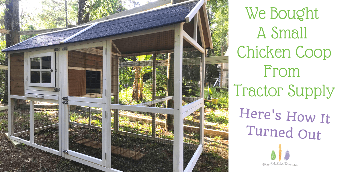 We Bought A Small Chicken Coop From Tractor Supply. Here's How It Turned Out.