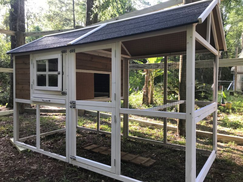 easy to build chicken coops